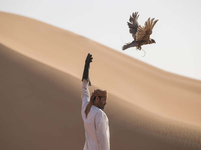 Falconry: an ancient traditional sport
